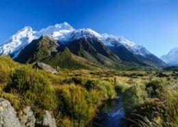 زندگی مهاجران در نیوزلند